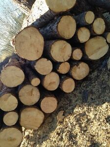 Cheap clean fuelwood