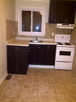 Clean 1 bedroom apartment for rent in Keswick