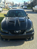 2000 Ford Mustang Saleen Coupe PRICE DROP
