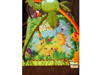 Fisher-Price Rainforest play mat