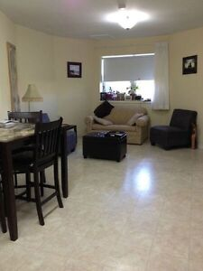 Downtown Apartment for 1 month rental Only