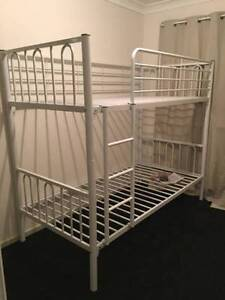 australian safety standards new bunk beds  very strong bunks $220 Old Guildford Fairfield Area Preview