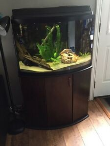 36 Gallon Bowfront Aquarium, Stand and Accessories