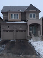 Brand new Basement Apartment in Newmarket