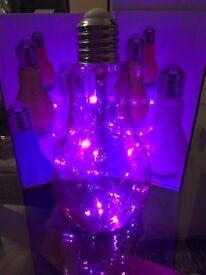 Led light bulb light