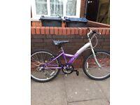Mountain purple adults bike