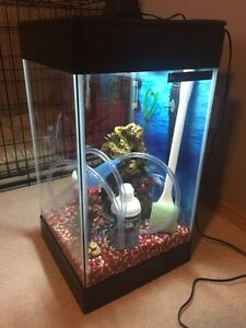 Aqueon 15 gallon deluxe aquarium kit Edmonton Edmonton Area image 1