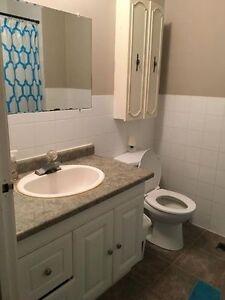 SPRING SUBLET 1 ROOM Kitchener / Waterloo Kitchener Area image 4