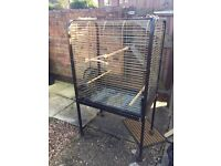 Old style parrot cage