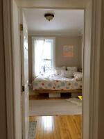 Beautiful Downtown Room available JUNE-AUGUST 2015