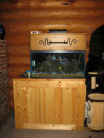 75 gal salt water tank