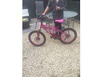 SpikeMountain bike