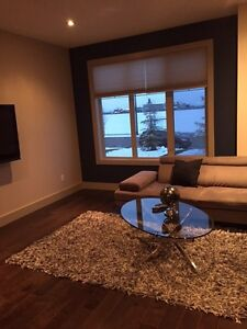 NEW IN LEDUC, ROOM RENTAL FREE RENT FOR MARCH!