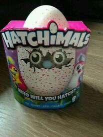 Hatchimals pink penguala or green draggle
