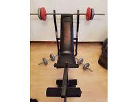 Weider Weights bench plus weights