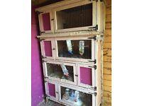 rabbit breeder hutches 3 or 4 blocks