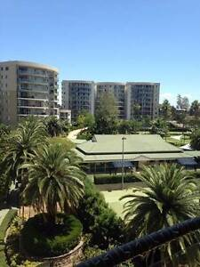 Excellent Accomodation with all facilities !! Muslim Preferred Westmead Parramatta Area Preview