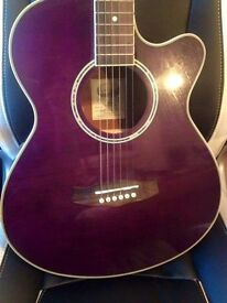 Tanglewood Discovery Electro Acoustic