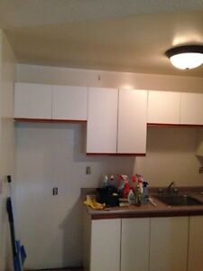 Full kitchen cabinets and countertop