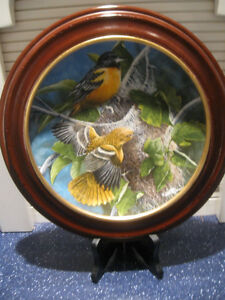 "1985 VINTAGE LIMITED EDITION FRAMED ""THE BALTIMORE ORIOLE"" PLATE"