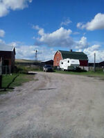 Seeking Roommate for July on Lovely Acreage/Farm/Central Balzac