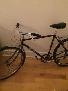 Bike Raleigh (fourche à changer)
