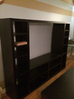 TV and TV wall unit