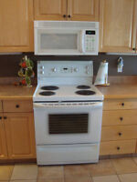 GoldStar Microwave And Exhaust Fan For Sale  In Great Condition