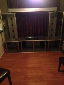 Wall unit entertainment