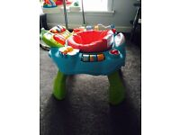 Blossom farm activity station - like new condition