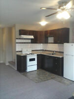Bright Renovated 1 Bedroom Apartment Available June 1st