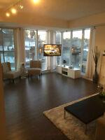 Luxurious 2 Bedroom Market Commons Condo
