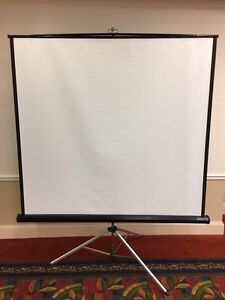 6x6 Projection Screen