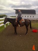 lessons , riding time, lease time