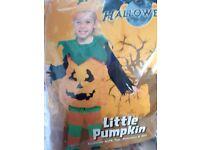 Brand new pumpkin costume age 3-4