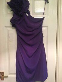 Oasis Purple dress