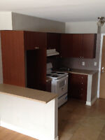 ►► Newly Renovated 3 1/2s in LaSalle! Available Now!