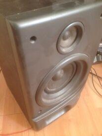 Goodman speakers x2