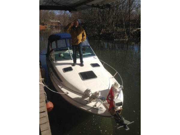Used 1989 Sea Ray Boats 220 DA