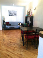 Apartment for Summer Rental, Available Immediately: May - August