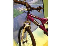 Dunlop kids mountain bike