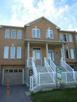 3 Bedroom Walk-Out Finished Basement Townhouse at Aurora