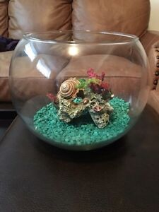 Fishbowl made of glass.   Decorative or for your new friend.
