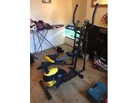 Everlast bike/walker & rowing machine
