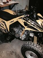 2006 Can-Am DS 250