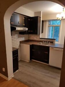 1 Bedroom apartment available July 1st. $850 / month