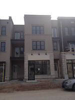 Brand New Oakville Townhouse - Loaded with Features