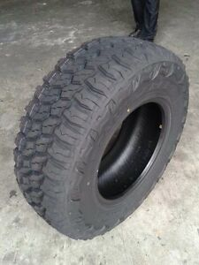 Mud Terrain Tires (Thunderer)