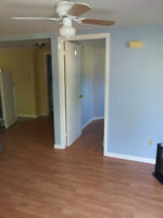 6 minutes walk from UNB/STU-2 bedroom private suite