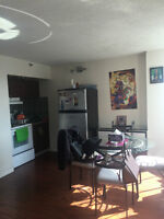 Spacious Studio in the center of Downtown